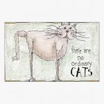 Ordinary Cats